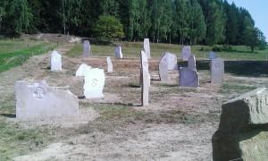 Kamenný kruh zvířat Marka Pogačnika